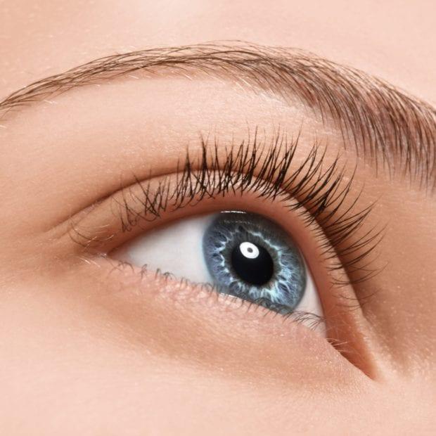 Eyelash Tint & Eyebrow Shape